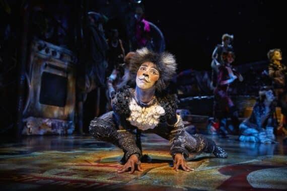 CATS Musical Mogador, Paris Stage Entertainment Franc