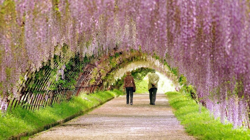 10 jardins paris que vous aimerez pour leur charme for Au jardin secret de tadine
