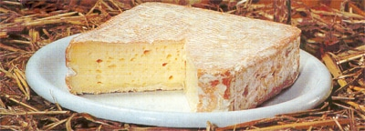fromage_pontleveque_vnc_1