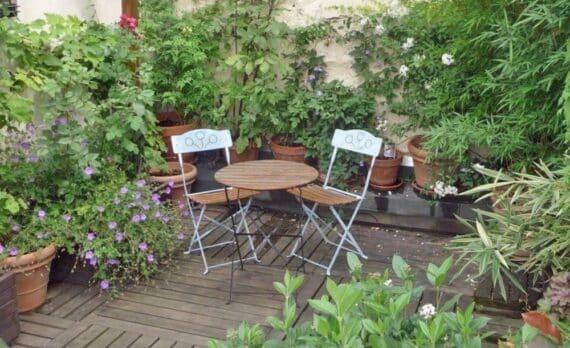 la-pergola-de-la-belle-terrasse-du-loft-1_5389229