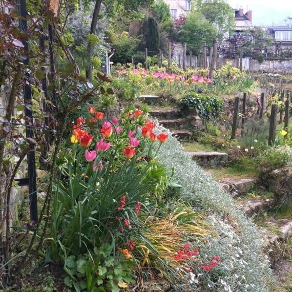 Jardins Renoir Montmartre 7