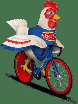 image-home-coq