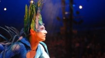 Varekai, un spectacle magique et féérique par Le Cirque du Soleil
